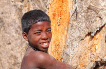 Under the Baobab II