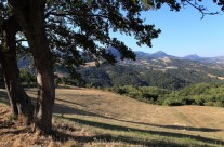 Ombre sulla valle