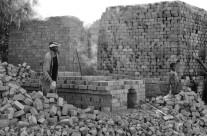 Bricks XIV